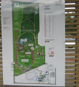 6-montreal-arboretum-botanical-garden
