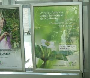 9-montreal-friends-of-garden